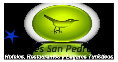 Hoteles en San Pedro Sula